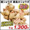 種ショウガ 国産霧島大ショウガ 1kg / 生姜 しょうが たね芋