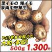 里いも種芋 泉南中野早生 500g / さといも サトイモ たね芋 たねいも