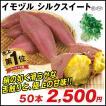 イモヅル シルクスイートPイモヅル 50本