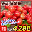 食品 山形産 佐藤錦 1kg 1組 さくらんぼ 国華園