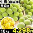 生梅 青森産 生梅【豊後梅】 10kg 1組 冷蔵便