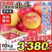 リンゴ 大特価 青森産 北斗(10kg)22〜46玉 ほくと ご家庭用 数量限定 希少品種 林檎 フルーツ 果物 国華園