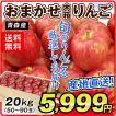 りんご お買得 青森産 おまかせりんご 《赤りんご》 約20kg1箱 木箱 林檎 フルーツ 果物 国華園