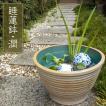 睡蓮鉢 すいれん鉢 潤(うるみ) 1個 直径31・高さ20c...