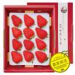 贈答用・特大いちご・紅ほっぺスーパープレミアム9粒または12粒400~450g 1箱