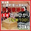 平成30年産 玄米 熊本県山都町産 特別栽培米 ひのひかり 30kg