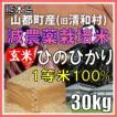 平成30年産 玄米 熊本県山都町産 減農薬栽培米 ひのひかり 30kg