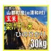 平成30年 玄米 熊本県山都町産(旧清和村)架け干し米 ヒノヒカリ 30kg