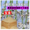 平成30年 玄米 熊本県山都町産アイガモ米 ヒノヒカリ 30kg