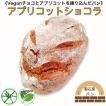 グルテンフリー チョコとカシューナッツのカンパーニュ 砂糖不使用 卵不使用 無添加パン 天然酵母パン 米粉パン 米粉100% 自然栽培米粉 グルテンフリーパン