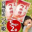 セール お米 29年 5キロ×2袋 宮城県産 つや姫 10kg (5kg×2) 米 ごはん うるち米 精白米