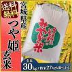 セール お米 29年産 30kg 玄米 つや姫 宮城県産 米 ごはん