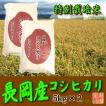 〔特別栽培米〕 新潟県産コシヒカリ (長岡産)(令和2年産)10kg(5kg×2袋)【送料無料(本州のみ)】