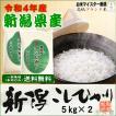 新潟県産コシヒカリ (令和2年産)10kg (5kg×2袋)【送料無料(本州のみ)】