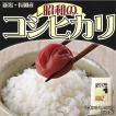 あの頃食べたお米の味を忘れないあなたに