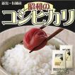 昭和のコシヒカリ(新潟県産コシヒカリ)10kg(5kg×2袋)(令和2年産)【送料無料(本州のみ)】