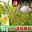 《超特価》 魚沼産コシヒカリ (特選) 特A 5kg(平成28年)【送料無料(本州のみ)】