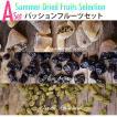 【メール便送料無料】夏のドライフルーツA:パッションフルーツセット