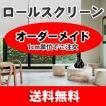 ロールスクリーン ロールカーテン RS051-001 (横35-50 縦40-50)