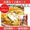 こんにゃく麺 カレーうどん 12食 送料無料 一部地域を除くダイエット 低糖質ダイエット