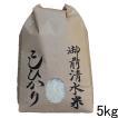 新潟県産コシヒカリ 栽培期間中農薬不使用・有機肥料100%栽培「御前清水米」5kg (30年産 2018年産)