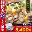 [カキ] ジャンボ広島カキ2kg(1kg×2袋) (かき 牡蠣 徳用)