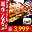御歳暮 丑の日 鹿児島県産 贅沢うなぎ3種食べ比べセット (長蒲焼き約130g×1尾、カットうなぎ蒲焼き50g×1枚、きざみうなぎ60g×1袋)