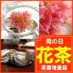 母の日ギフト 2018 花咲くお茶ギフト 茶葉増量版♪ カーネーション お茶 ∬CT-5-hr§