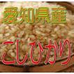 こしひかり 10kg(玄米) 令和2年産 愛知県産