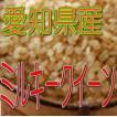 ミルキークイーン 10kg(玄米) 令和2年産 愛知県産