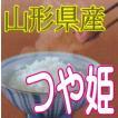つや姫 10kg(白米) 令和2年産 山形県産 【特別栽培米】