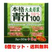 本格大麦若葉青汁100 (3g×30包)×6箱
