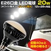 LED 電球 E26 20w 船用 作業灯 デッキライト 集魚灯に 24v 12v 兼用 発光色 白/オレンジ/青 無極性 防水 ノイズレス