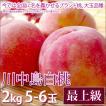 川中島白桃 桃 お中元 フルーツ 最上級 2kg 5-6玉入り