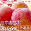 川中島白桃 桃 お中元 フルーツ 特選品 3kg 8-9玉入り