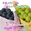 【ポイント5倍】ナガノパープル&シャインマスカット セット ハウス 2キロ4-5房 高級フルーツ