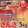 さんさ 5kg 送料無料 長野県産 家庭用 わけあり 夏 りんご