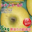 シナノゴールド 長野りんご -訳あり 送料無料-  家庭用約 約5kg