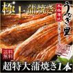 うなぎ 蒲焼き 国産 超特大蒲焼き(215g以上)1本 鹿...