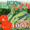 伊藤家のスイカL玉 大玉 熊本県植木スイカ(植木西瓜)