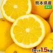 和製グレープフルーツ 訳あり 1.5kg 河内晩柑 熊本県...