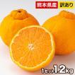 送料無料  デコポンと同品種 本場熊本産 訳ありデコみ...