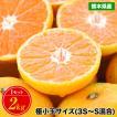 【大豊作記念SALE】 小玉 みかん 2kg 送料無料 2セッ...