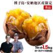 中園ファーム 安納芋 秀品 1.5kg S~2Lサイズ混合 送...