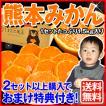 スーパーW増量 熊本県産【訳あり】お試し熊本みかんタ...
