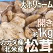"""【送料無料】カナダ・北米産 """"松茸"""" 約1kg 開き 大きさおまかせ【予約 10月以降】【グルメ】"""