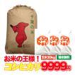 米 30kg 10kg×3袋 千葉県 こしひかり 玄米 お米 28年産 新米 送料無料
