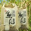米 2kg 魚沼産 コシヒカリ 新米 30年産 検査1等米自慢の 米