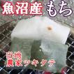 餅 もち 送料無料 白餅+よもぎ餅 各500gセット 魚沼産最高級こがねもち使用(九州北海道沖縄送料加算有)