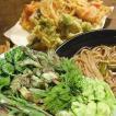 山菜セット 天ぷら 山菜天ぷら  レシピ セット(お買得たっぷり18-20人前位)ご予約開始(発送は4/下旬〜)